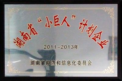 2011年xiao巨人计划企业